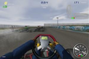 Capture d'écran du jeu Wildkart